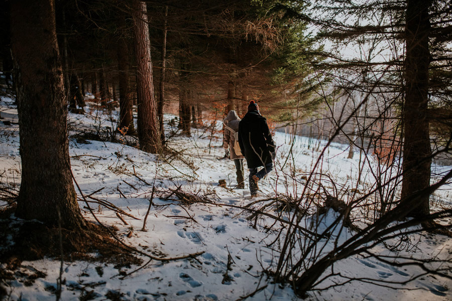 wandering in the snowy woods